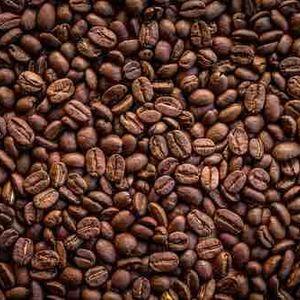Raw Common Coffee Bean